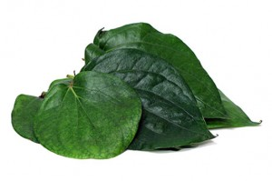 Paan Leaves(per pc)