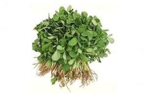 Methi Fresh 1 Bunch