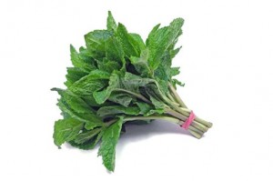 Mint Fresh 1 Bunch