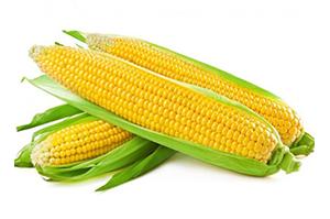 Corn Whole 500 GM