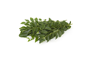 Curry Leaves Bunch 100 GM